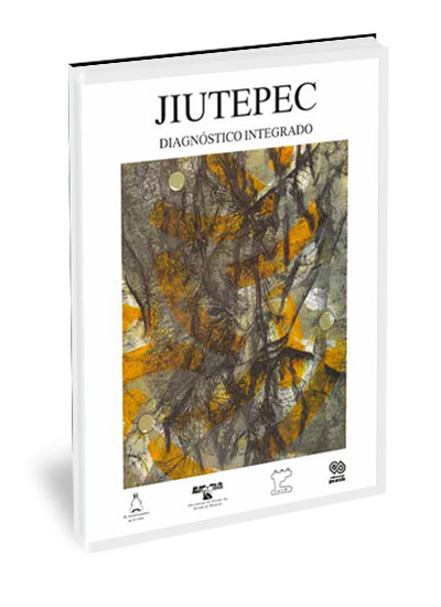 Jiutepec, diagnóstico integrado